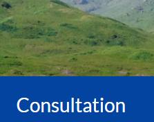 "Image of a green landscape - caption ""consultation"""